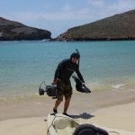 Filming Oceanic White Tip Sharks at Soccoro Island
