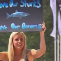 Austrailians stand up for sharks!